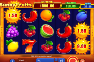 Revue du jeu en ligne Sunny Fruits : Hold and Win