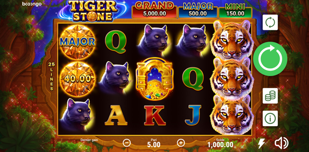 Tiger Stone : Hold and Win