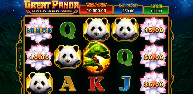 Great Panda : Hold and Win