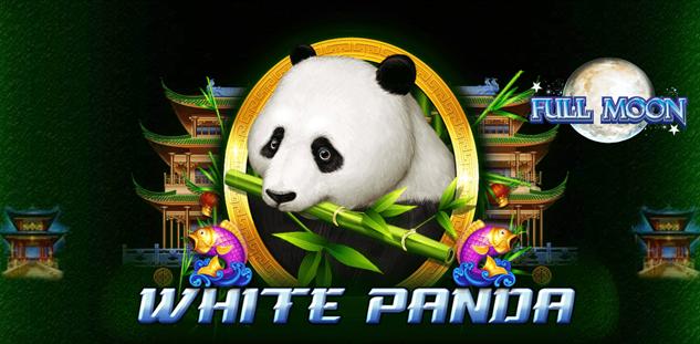 Full Moon : White Panda